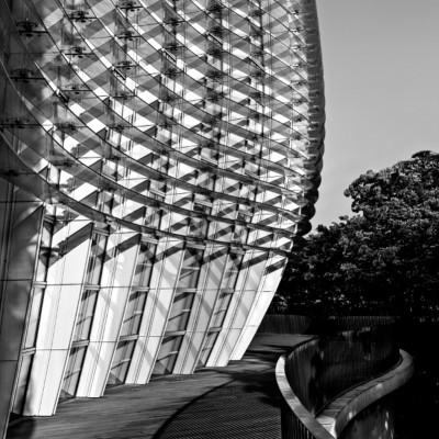 8 National Art Center Tokyo